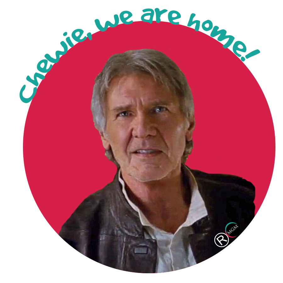 HAN SOLO ANGLAIS COULEUR 900x900 RATING